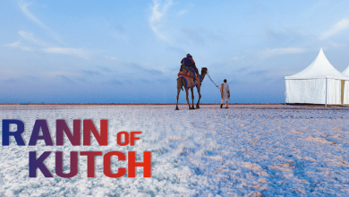 rann utsav of kutch
